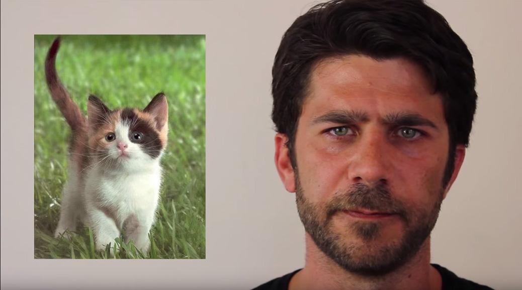 Brett Hamil: Sawant Rescues Kitten from Tree